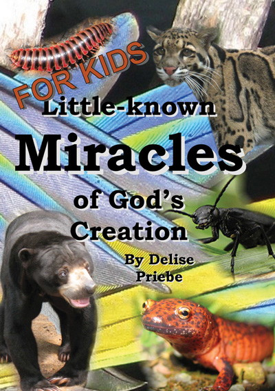 Little-known Miracles of God's Creation [for Kids]