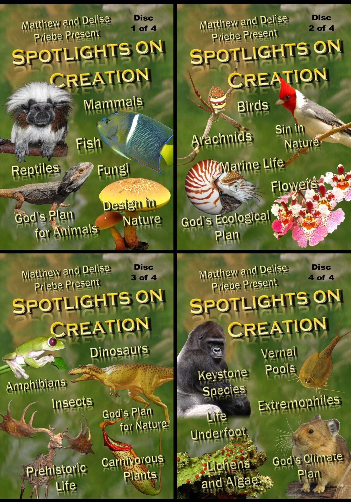 Spotlights on Creation (4 Discs)